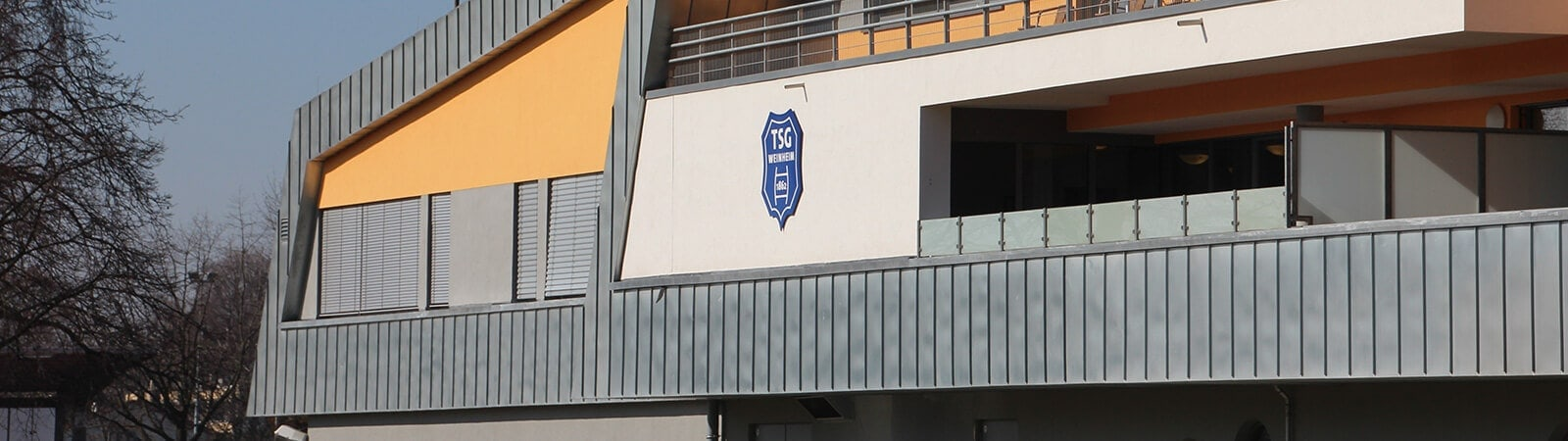 TSG Weinheim - Download
