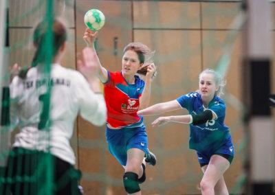 Handball-Birk_06-25-02-2018