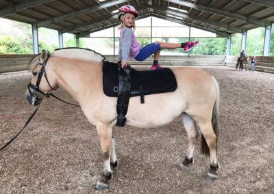 Kunststücke auf dem Pferd werden einstudiert.