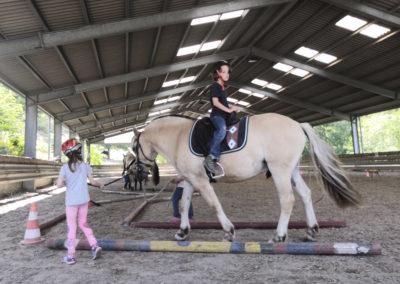 Die Kinder lernen die Pferde zu.
