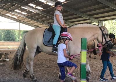 Das Glück der Erde liegt auf dem Rücken der Pferde.