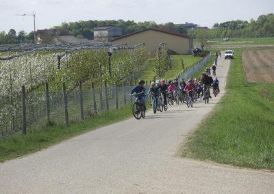 Fahrradfahren, Ausflüge - in den Feriencamps wird alles gemacht, was Spaß macht.